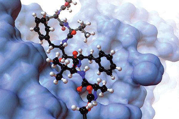 department of molecular medicine scripps research