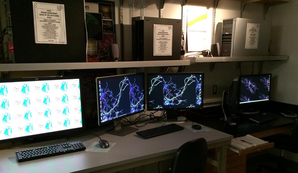 Core Microscopy Facility | Scripps Research