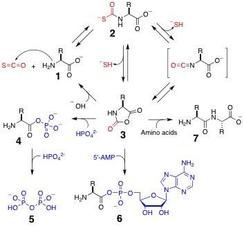 Chemistry molecular approach